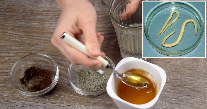 čišćenje od parazita kod ljudi